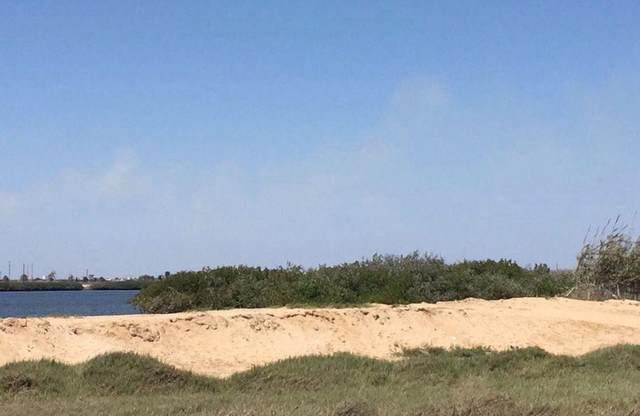 Paseo Costero Ytuxpan,Sancarl, Comondu, BS  (MLS #21-1577) :: Own In Cabo Real Estate
