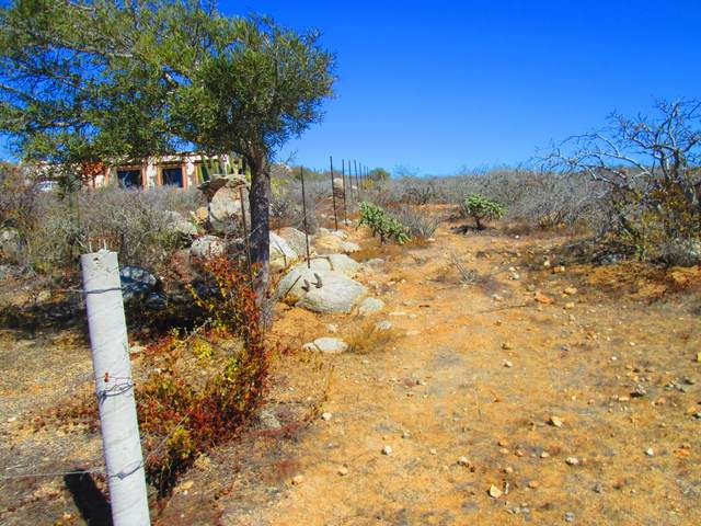 Manz XIX Zacatitos  Lote 2A, East Cape, BS  (MLS #21-1585) :: Own In Cabo Real Estate