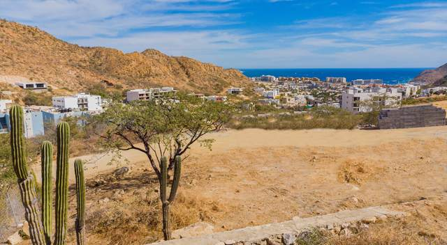 Mza O Lomas Del Cabo, Cabo San Lucas, BS  (MLS #21-164) :: Own In Cabo Real Estate