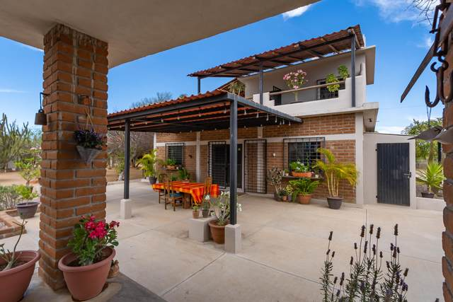 Sin Nombre, La Paz, BS  (MLS #21-1645) :: Own In Cabo Real Estate