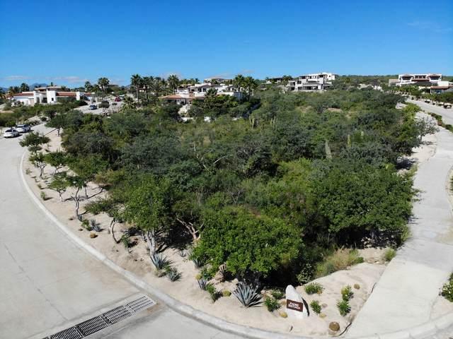 Padre Sistiaga, San Jose del Cabo, BS  (MLS #21-168) :: Own In Cabo Real Estate