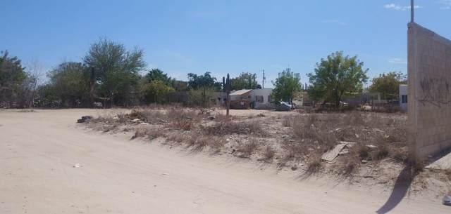 Calle De Los Viejitos, La Paz, BS  (MLS #21-1750) :: Own In Cabo Real Estate