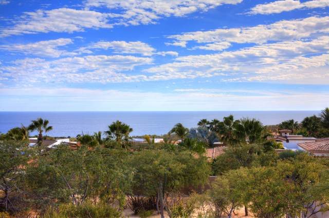 204 Ave San Javier, San Jose del Cabo, BS  (MLS #21-177) :: Own In Cabo Real Estate