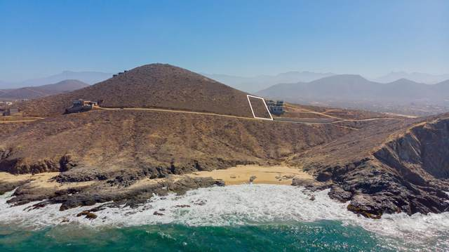 Oceanview Lot, Pacific, MX  (MLS #21-1852) :: Own In Cabo Real Estate
