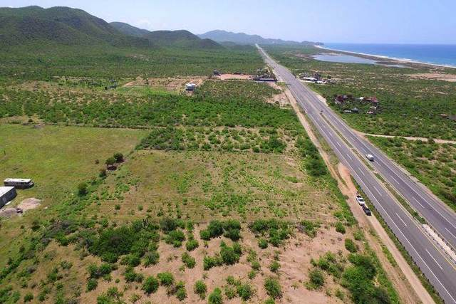 Transpeninsular, Pacific, MX  (MLS #21-1854) :: Own In Cabo Real Estate