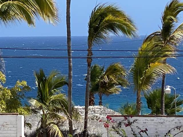 Carratera 1, East Cape, MX  (MLS #21-1890) :: Own In Cabo Real Estate