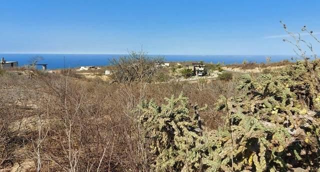 6 Retorno, Pacific, MX  (MLS #21-1905) :: Own In Cabo Real Estate