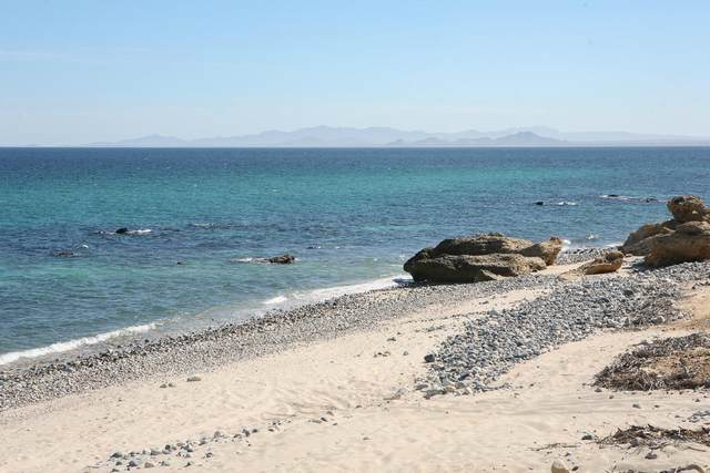 Montemar Lot 20 Beachfront, East Cape, BS  (MLS #21-191) :: Own In Cabo Real Estate