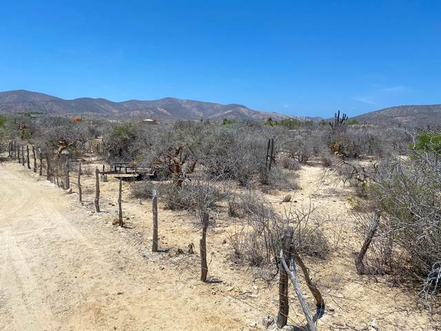 The Story Lot, East Cape, MX  (MLS #21-1938) :: Own In Cabo Real Estate