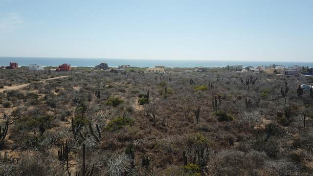 Lote 068 Fracc. Parcela 251Z1p3/3, Pacific, MX  (MLS #21-1971) :: Own In Cabo Real Estate