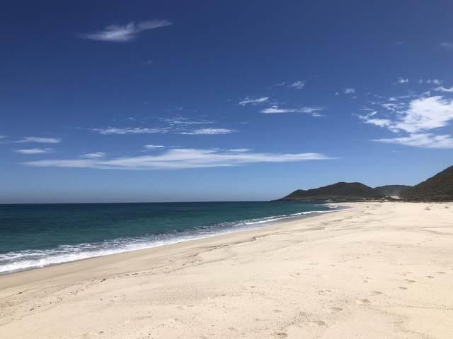 Camino Cabo Este, East Cape, MX  (MLS #21-1982) :: Own In Cabo Real Estate