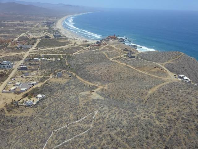 sn Parcel 2658, Pacific, MX  (MLS #21-1983) :: Own In Cabo Real Estate