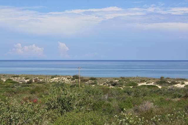 Palmas Y Surguidero Fraccion I, East Cape, MX  (MLS #21-2036) :: Own In Cabo Real Estate