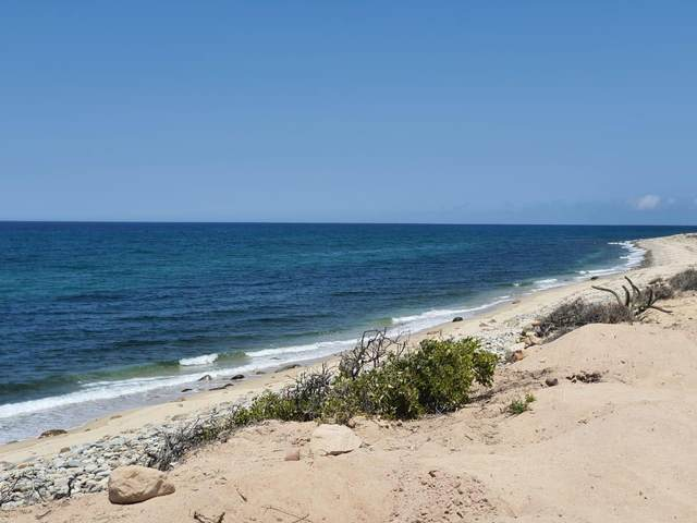 San Isidro, East Cape, MX  (MLS #21-2045) :: Own In Cabo Real Estate