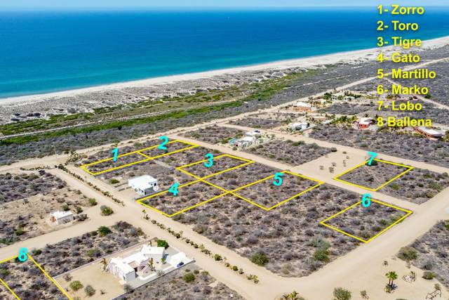 Las Lomas II, East Cape, MX  (MLS #21-2054) :: Own In Cabo Real Estate