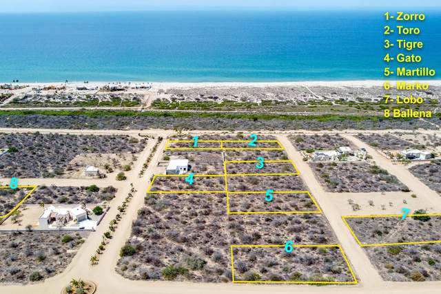 Las Lomas II, East Cape, MX  (MLS #21-2057) :: Own In Cabo Real Estate