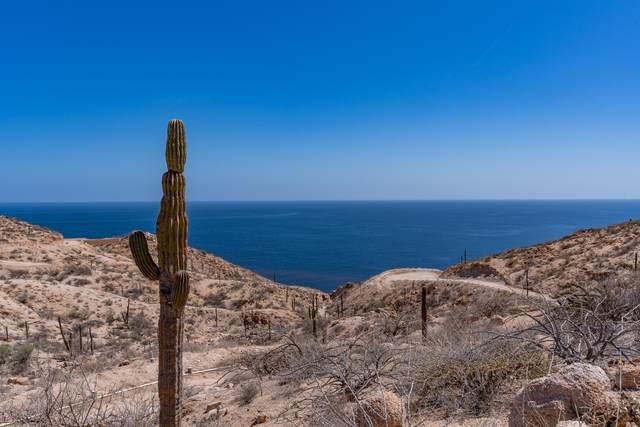 17 Piedra Mexia, La Paz, MX  (MLS #21-2065) :: Own In Cabo Real Estate