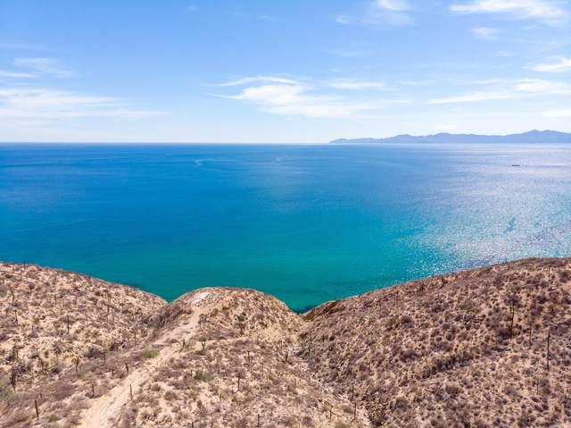 Boca Del Rosario, El Saltito, La Paz, MX  (MLS #21-2066) :: Own In Cabo Real Estate