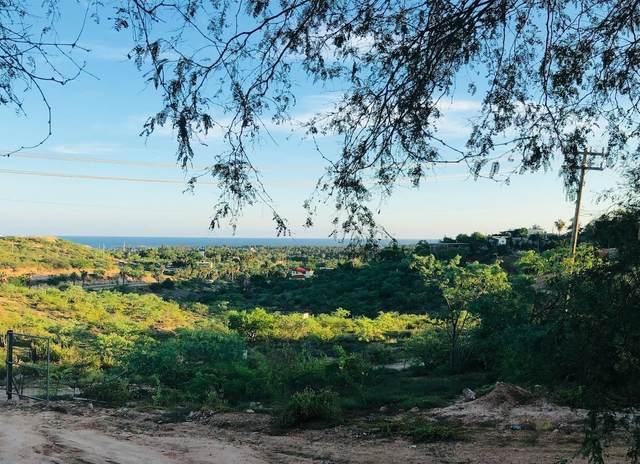 Sin Nombre, San Jose del Cabo, MX  (MLS #21-2099) :: Own In Cabo Real Estate