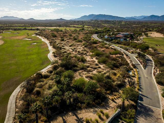 2 Oasis, San Jose Corridor, BS  (MLS #21-212) :: Own In Cabo Real Estate