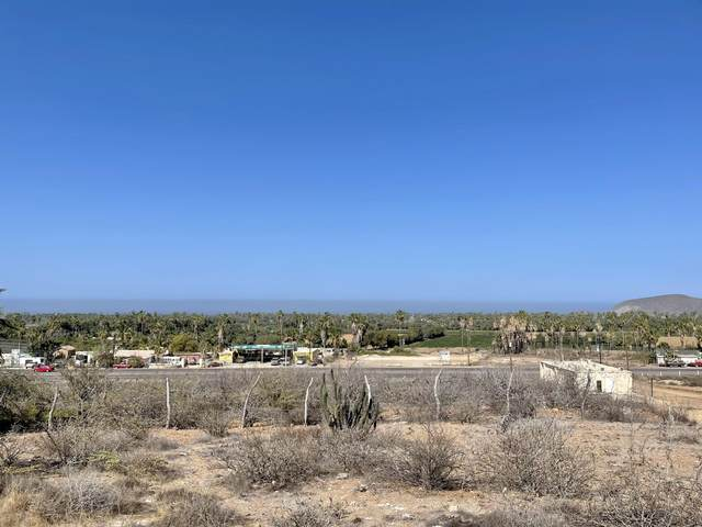 Access, Pacific, MX  (MLS #21-2120) :: Own In Cabo Real Estate