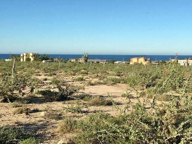 Magnificent El Posito Land, Pacific, MX  (MLS #21-2151) :: Ronival