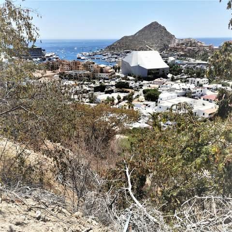 Camino Grande, Cabo San Lucas, MX  (MLS #21-2169) :: Own In Cabo Real Estate