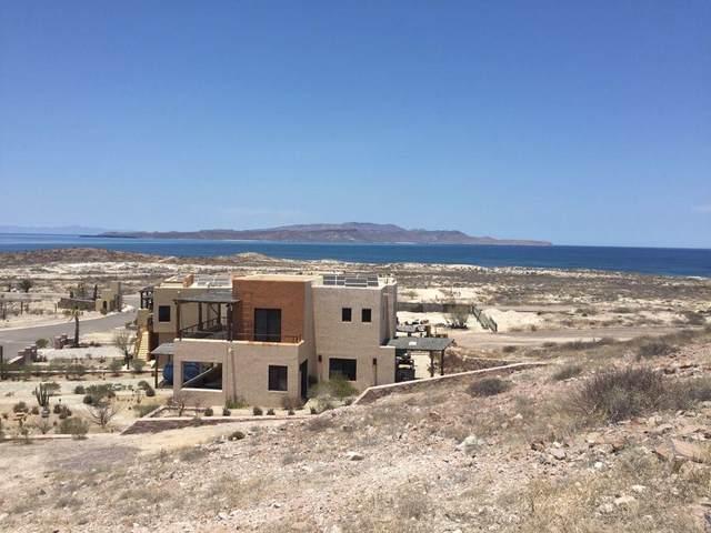 31 S/N, La Paz, MX  (MLS #21-2257) :: Own In Cabo Real Estate