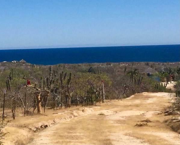3A Camino Cabo Del Este, East Cape, MX  (MLS #21-2263) :: Ronival