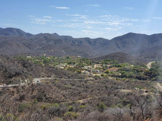 San Antonio Lot, East Cape, MX  (MLS #21-2298) :: Own In Cabo Real Estate