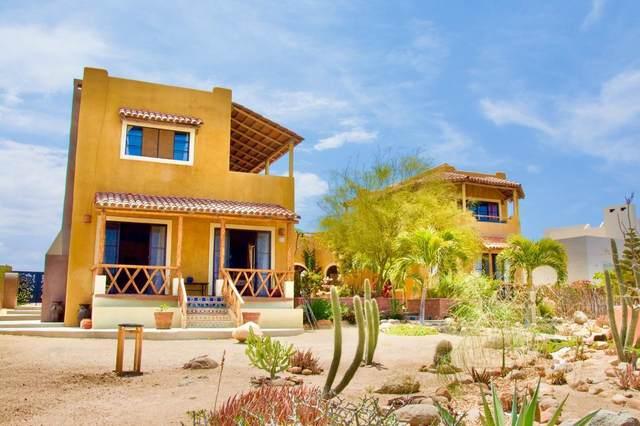 S/N Camino Brisa Del Mar, Pacific, MX  (MLS #21-2325) :: Own In Cabo Real Estate