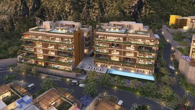 Via De Lerry #204, Pacific, MX  (MLS #21-2433) :: Own In Cabo Real Estate