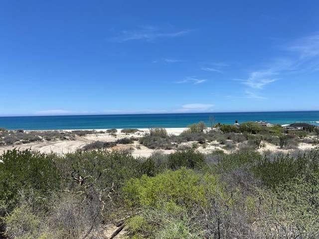 Camino Cabo Este, East Cape, MX  (MLS #21-2435) :: Own In Cabo Real Estate