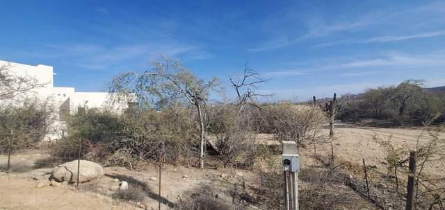 Las Brisas, East Cape, MX  (MLS #21-2456) :: Own In Cabo Real Estate