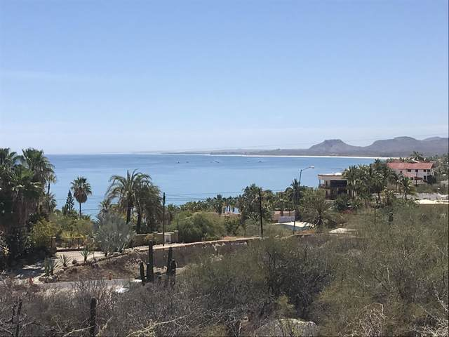 Japones Drive, East Cape, MX  (MLS #21-2484) :: Own In Cabo Real Estate