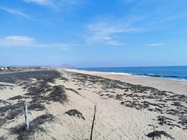 Las Tunas, Pacific, MX  (MLS #21-2488) :: Own In Cabo Real Estate