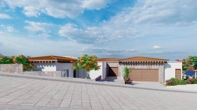 Next To St Regis, Pacific, MX  (MLS #21-2490) :: Own In Cabo Real Estate