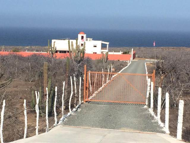 KM 98 Carretera Transpeninsular #19, Pacific, BS  (MLS #21-25) :: Own In Cabo Real Estate