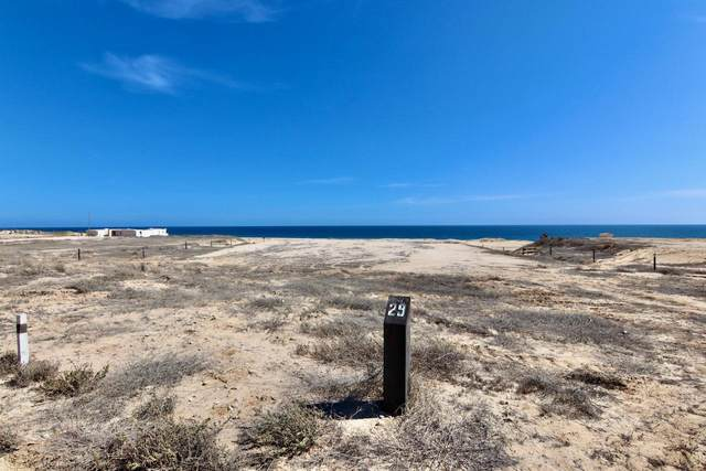 Beach Estate Lot# 29, Pacific, MX  (MLS #21-2535) :: Own In Cabo Real Estate