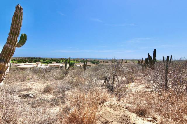 Sunset Hill Lot #57, Pacific, MX  (MLS #21-2536) :: Ronival