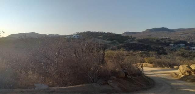 Lote 71, San Jose del Cabo, MX  (MLS #21-2568) :: Own In Cabo Real Estate