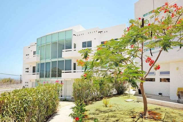 Isla San Luis #15, Cabo Corridor, MX  (MLS #21-2633) :: Own In Cabo Real Estate