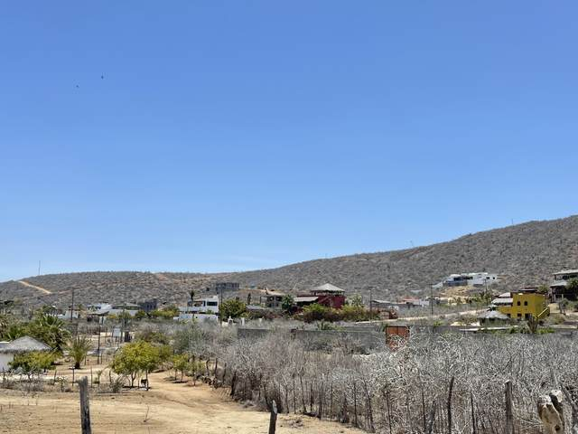 Access, Pacific, MX  (MLS #21-2651) :: Ronival