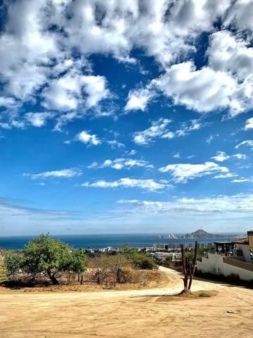El Tezal, Cabo Corridor, MX  (MLS #21-2672) :: Ronival