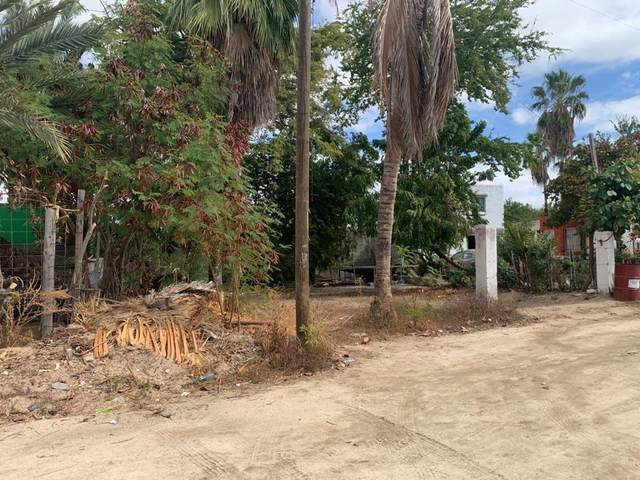 No Name Lote 3 Manzana 7, San Jose del Cabo, BS  (MLS #21-270) :: Own In Cabo Real Estate