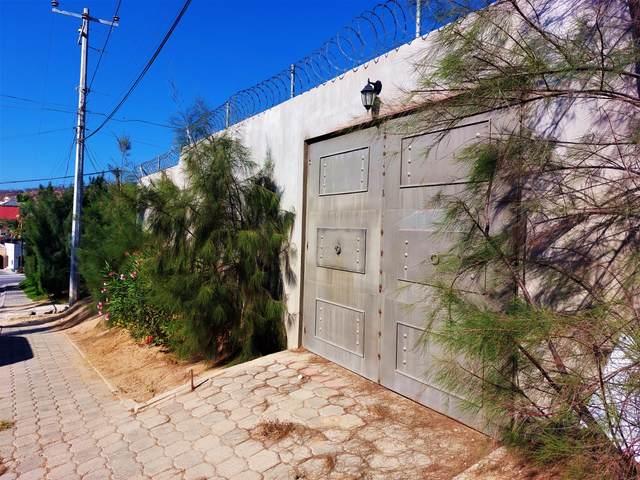 Don Alberto Street, Cabo San Lucas, MX  (MLS #21-2705) :: Own In Cabo Real Estate