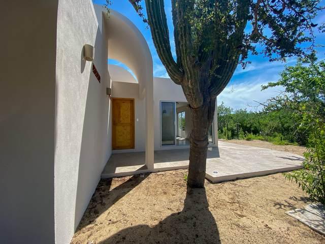 Huerta Hermosa Pescadero Sn M-46 L 703, Pacific, MX  (MLS #21-2981) :: Ronival