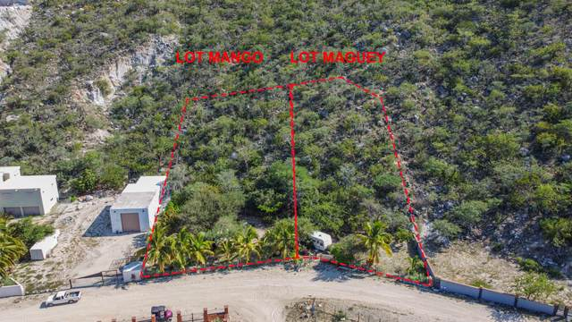 Maguey Lot, East Cape, MX  (MLS #21-3056) :: Own In Cabo Real Estate