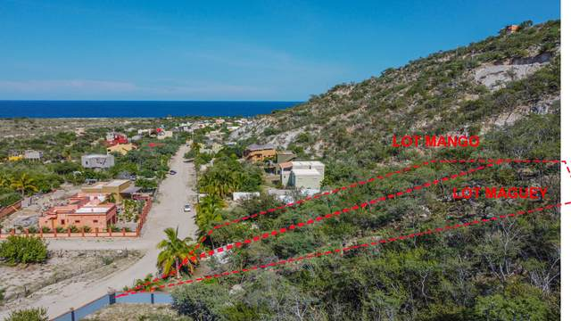 Mango Lot, East Cape, MX  (MLS #21-3057) :: Own In Cabo Real Estate