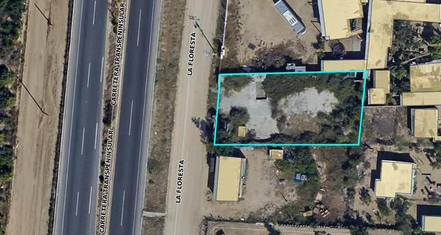 Flores, San Jose del Cabo, MX  (MLS #21-3118) :: Own In Cabo Real Estate